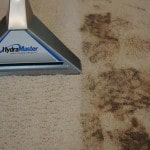 BBC Carpet Cleaning